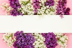 Lilac bloemenbos met witte spatie en plaats voor tekst Syringagrens stock fotografie