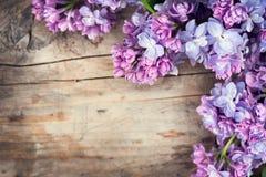 Lilac bloemenbos over houten achtergrond royalty-vrije stock afbeeldingen