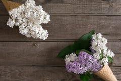 Lilac bloesem op rustieke houten achtergrond met lege ruimte voor groetbericht Hoogste mening Royalty-vrije Stock Foto