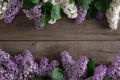 Lilac bloesem op rustieke houten achtergrond met lege ruimte voor groetbericht Hoogste mening Stock Afbeelding