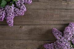 Lilac bloesem op rustieke houten achtergrond met lege ruimte voor groetbericht Hoogste mening Royalty-vrije Stock Afbeeldingen