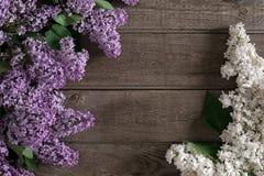Lilac bloesem op rustieke houten achtergrond met lege ruimte voor groetbericht Hoogste mening Stock Foto's