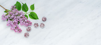 Lilac blossom branches and bliss balls on Carrara marble counter Stock Photo