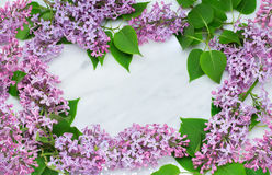 Lilac blossom branches frame on Carrara marble countertop Stock Image