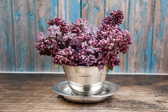 Lilac blossom Stock Photography