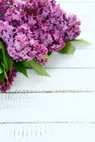 Lilac on the boards Stock Image