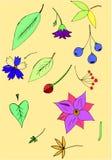 Lilac boeket stock illustratie