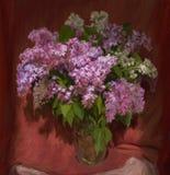 Lilac boeket Stock Afbeeldingen