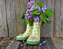 Lilac boeket in de laarzen van de stipregen royalty-vrije stock foto's