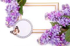 Lilac Boeket en decoratief kader Royalty-vrije Stock Foto