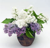 Lilac bouquet Stock Photo