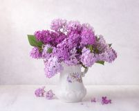 Lilac bouquet in the faience jug on a white wooden table. Soft focus.  royalty free stock photography