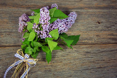 Lilac bouquet tied with gingham bow Royalty Free Stock Image