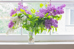 Lilac bouquet in vase on window Stock Photos