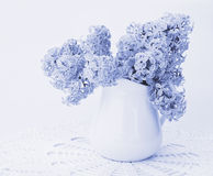 Lilac bouquet in a white jug Royalty Free Stock Photography