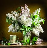 Lilac bouquet. Stock Photography