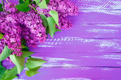 Lilac branch of lilac with green leaves on a purple wooden backg. Round, top view horizontal composition Stock Photography