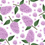 Lilac branch pattern seamless Royalty Free Stock Photos