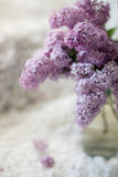 Lilac branch in a vase on a white delicate textile background Stock Images