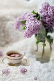 Lilac branch in a vase on a white delicate textile background Stock Photos