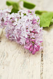 Lilac branch on wooden table Royalty Free Stock Photography