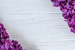 Lilac branches on the corners of the white wooden surface. Contrast studio picture royalty free stock photo