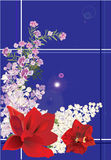 Lilac branches and red lilies on blue Stock Photography