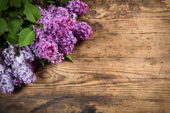 Lilac on brown wood texture Royalty Free Stock Photo