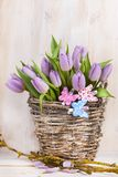 Lilac bunch of tulips Royalty Free Stock Images