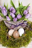 Lilac bunch of tulips Royalty Free Stock Photography