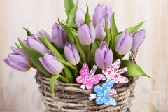 Lilac bunch of tulips Stock Photos