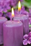 Lilac candles Stock Images