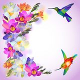 Lilac card with freesia flowers and humming birds. Vector lilac greeting background with flitting humming-bird with and beautiful freesia flowers Stock Photography