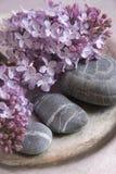 Lilac com seixos Imagem de Stock Royalty Free