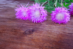 Lilac cornflowers on vintage wooden Royalty Free Stock Image