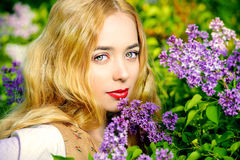 Lilac country Royalty Free Stock Images