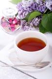 Lilac do estilo de vida Imagens de Stock