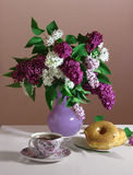 Lilac and donuts still life Stock Photos