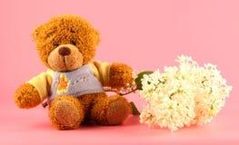 Lilac e um urso Foto de Stock Royalty Free