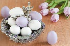 Lilac en witte eieren in een nest Stock Afbeeldingen
