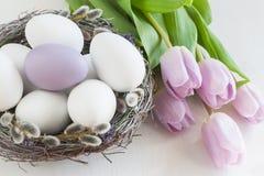 Lilac en witte eieren in een nest Stock Fotografie