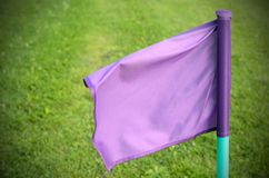 Lilac flags on the green grass of a football playing field. Stock Images