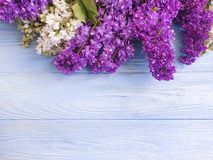 Lilac flower blossom bouquet on blue wooden background frame beauty. Lilac flower  blossomon blue wooden background frame  beauty greeting bouquet stock images