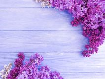 Lilac flower bouquet design beautiful decor on pink wooden background frame stock photos