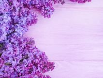 Lilac flower bouquet design decor on pink wooden background frame royalty free stock images