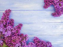 Lilac flower bouquet design greeting decor on blue wooden royalty free stock photos