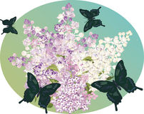 Lilac flower branch and dark butterflies Royalty Free Stock Photos