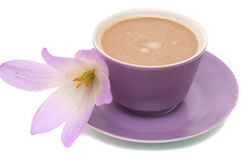 The lilac flower and cup from coffee are isolated. On a white background Royalty Free Stock Photography