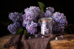 Lilac flower- herbal composition Royalty Free Stock Photography