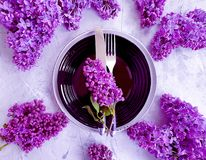 lilac flower plate concrete background table decor vintage stock photography